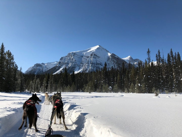 3 Days in Banff National Park